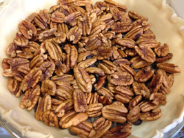 Pecans cover chocolate - YUM